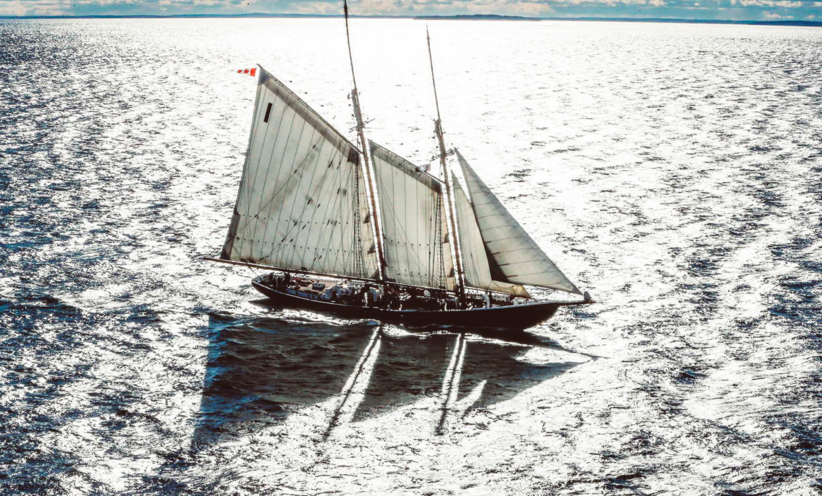 birds-eye view of the Bluenose
